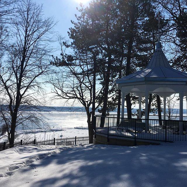 Parc du Bois de Coulonge . . . #parcduboisdecoulonge #fevrier #soleil #quebeccity #villedequebec