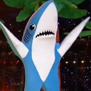 Shark Week is my favorite week - I have an irrational fear of sharks in the deep end of the pool.