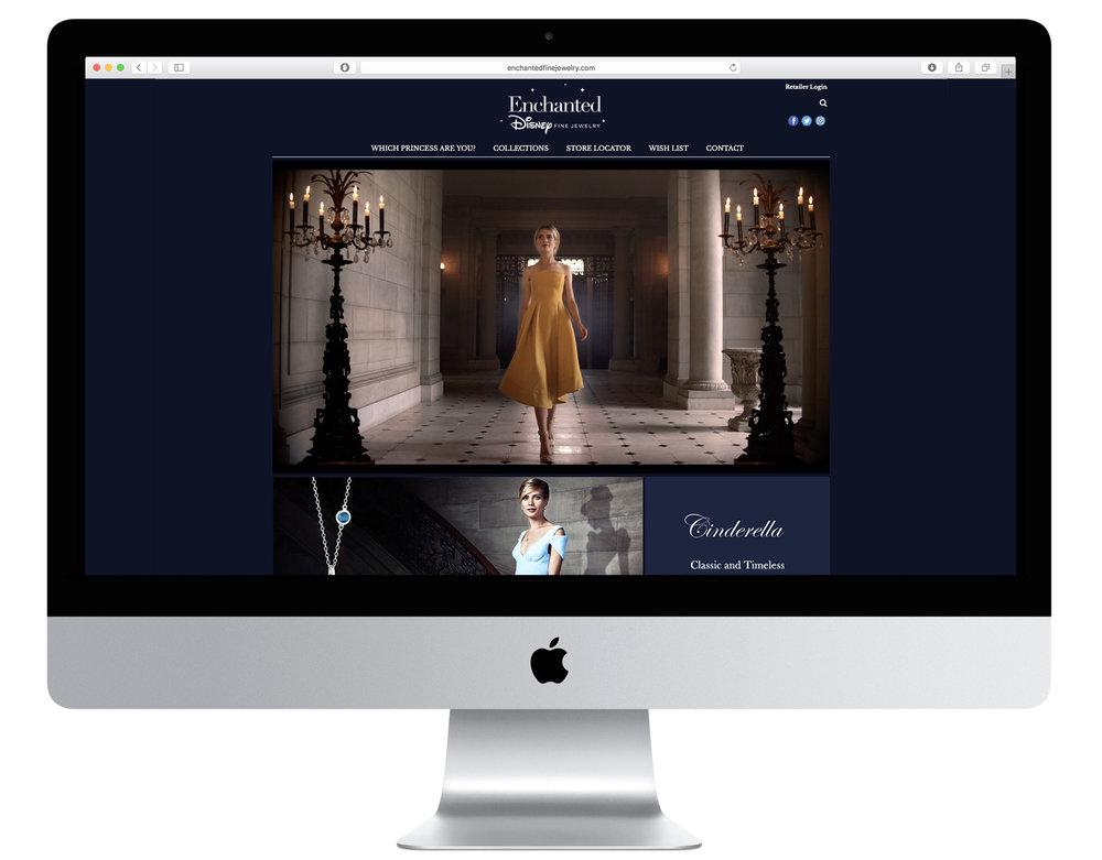Disnet Web Screen.jpg