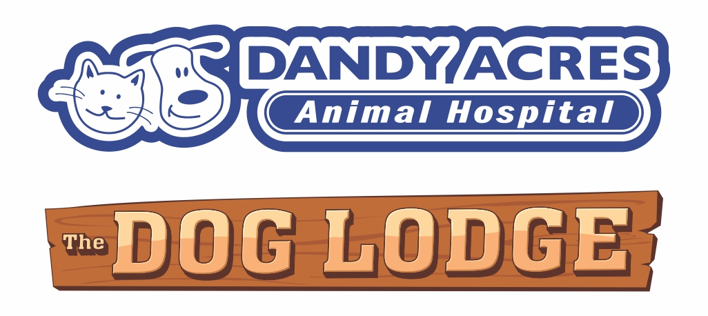 Dandy Acres Vet Clinic & The Dog Lodge