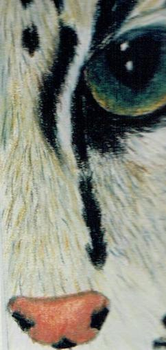 Caitlin cat eye.jpg
