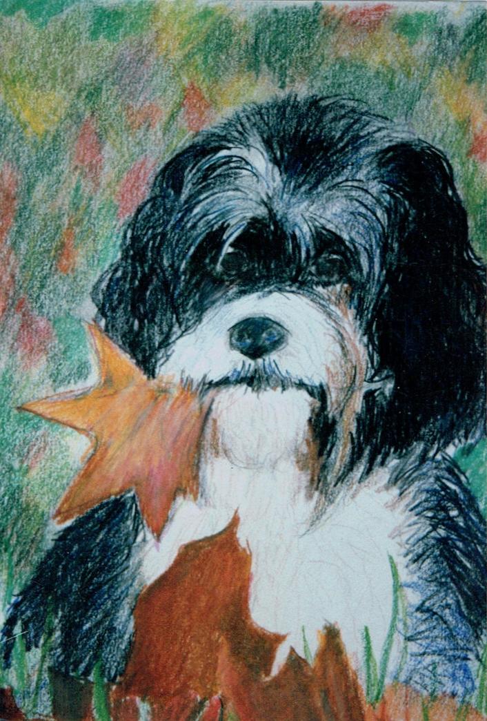 dog oil pastel.jpg