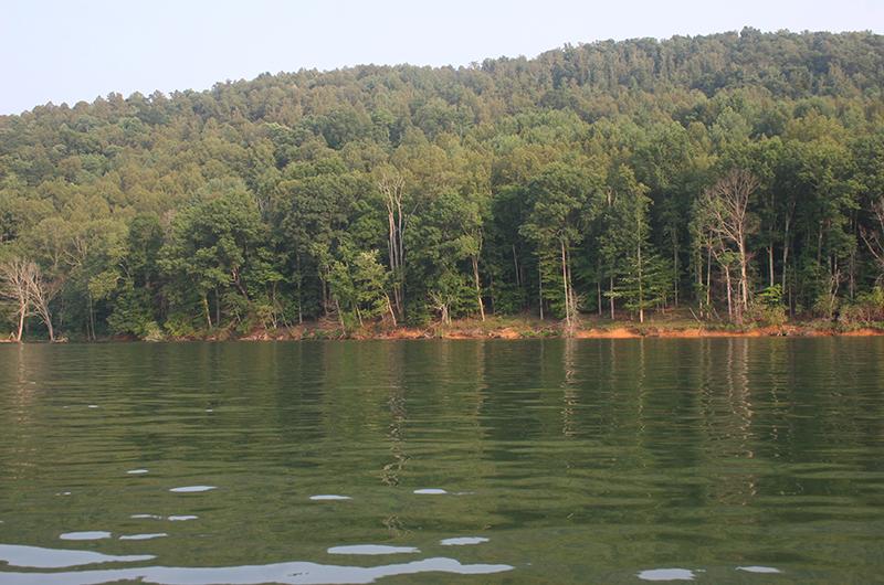 2015-07-07-Lake-Watauga-L.P.-029.jpg