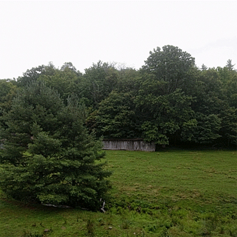 Moore-2.96-acres-4.jpg