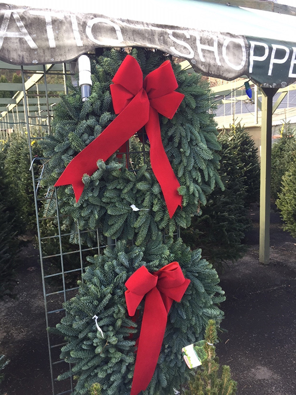 Gilmore-Wreaths-at-market---IMG_5884.jpg