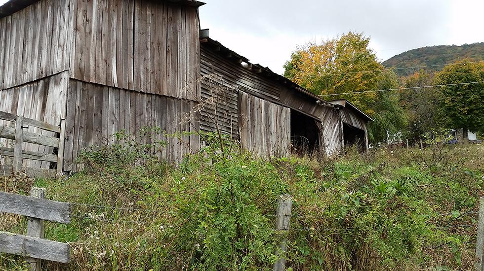 Lozzi-barn.jpg