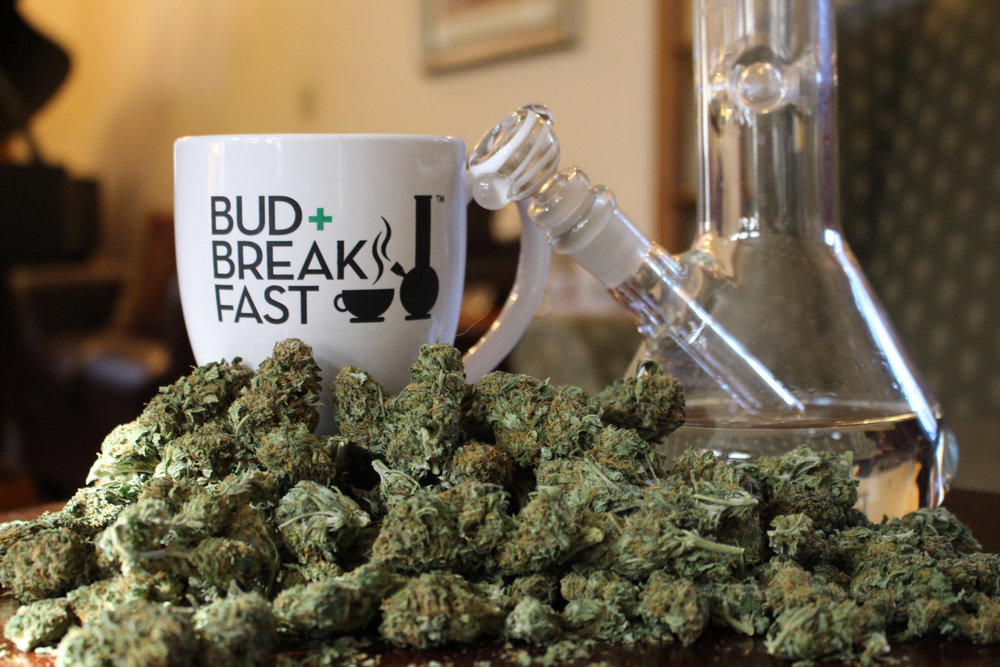 Bud+Breakfast