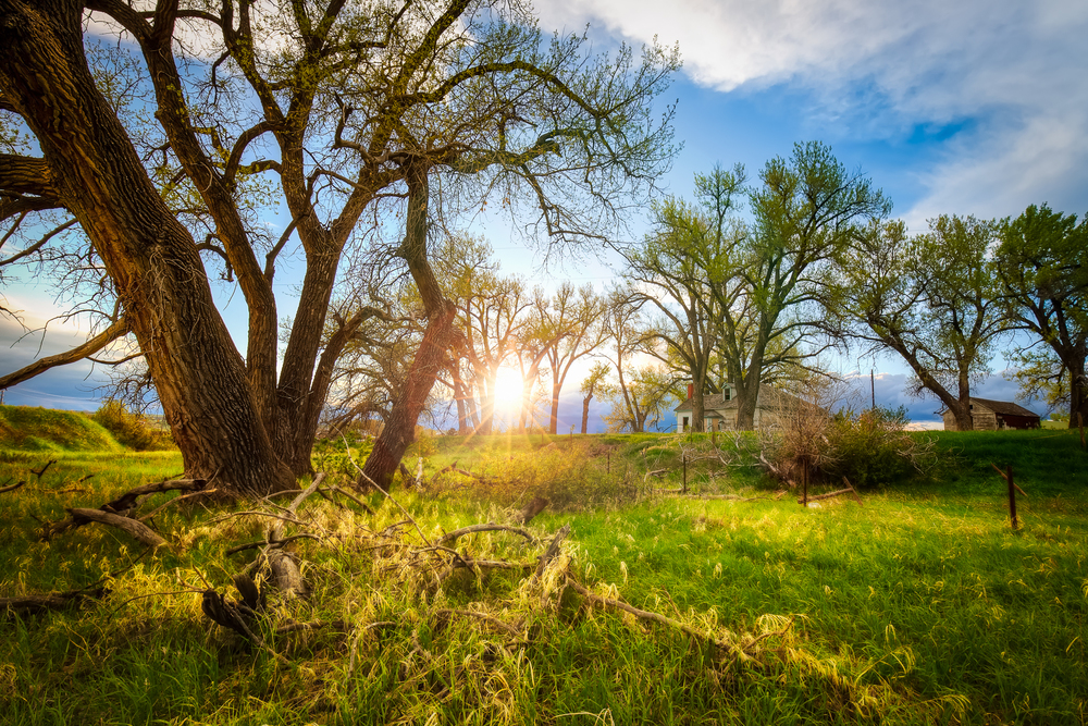 I really like shooting landscapes in the spring since everything is so green and full of life.  (7) bracket HDR f/10@16mm ISO 400