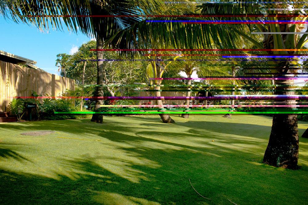 PROPERTY-GARDENS-coconut grove.jpg