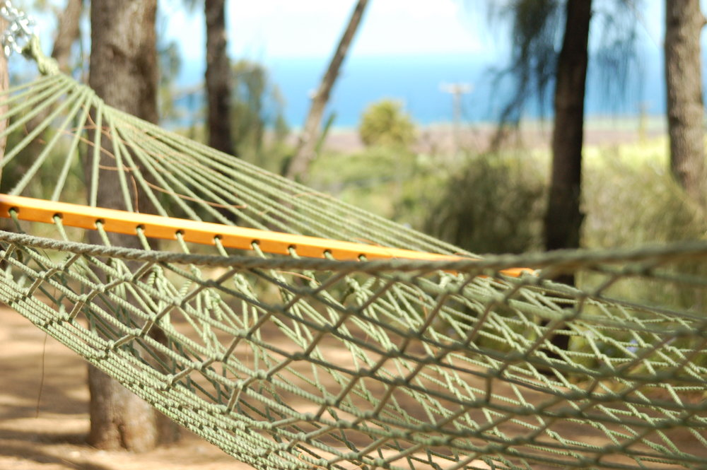 PROPERTY-GATHERING SPACES-HAMMOCK-detail shot of hammock.jpg