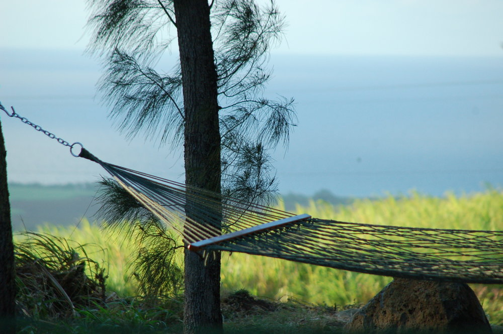PROPERTY-GATHERING SPACES-HAMMOCK-half hammock with ocean view.jpg