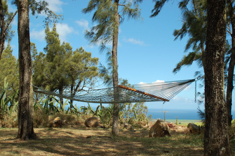 PROPERTY-GATHERING SPACES-HAMMOCK-full shot with ocean view.jpg