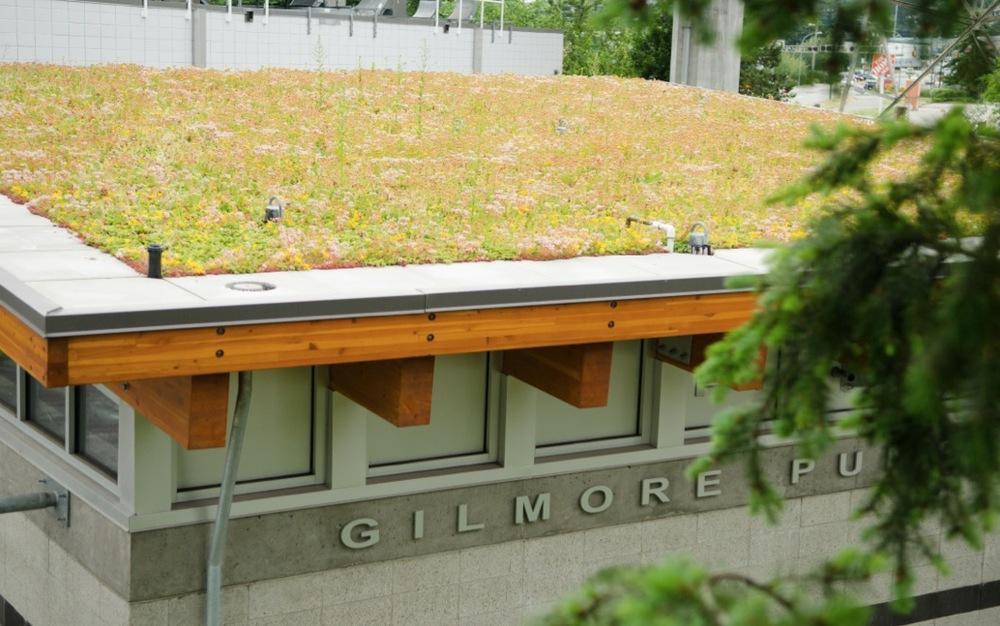 gilmore-green-roof.jpg