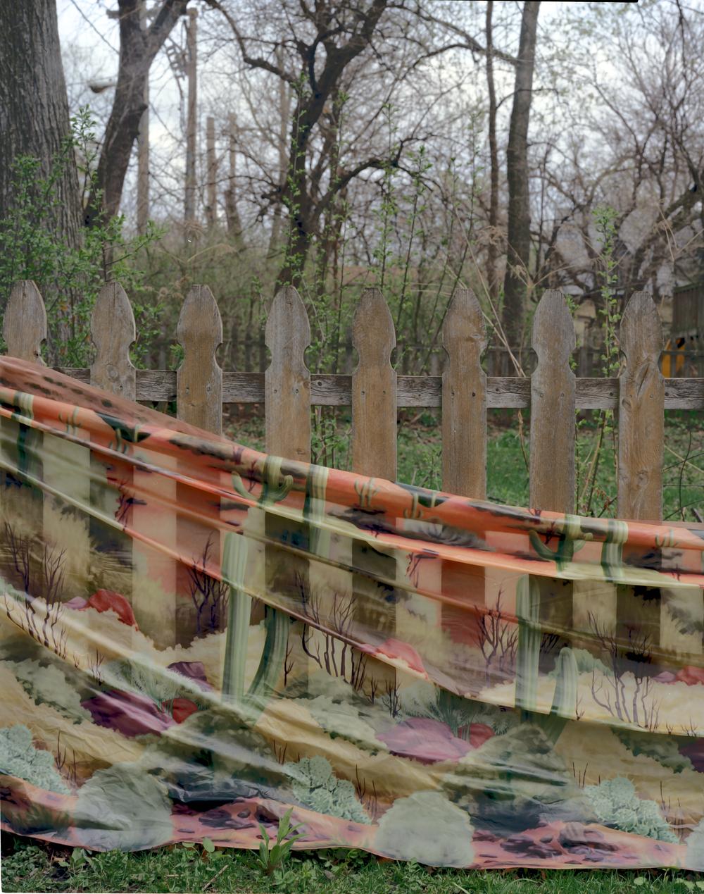 fence2 001.jpg
