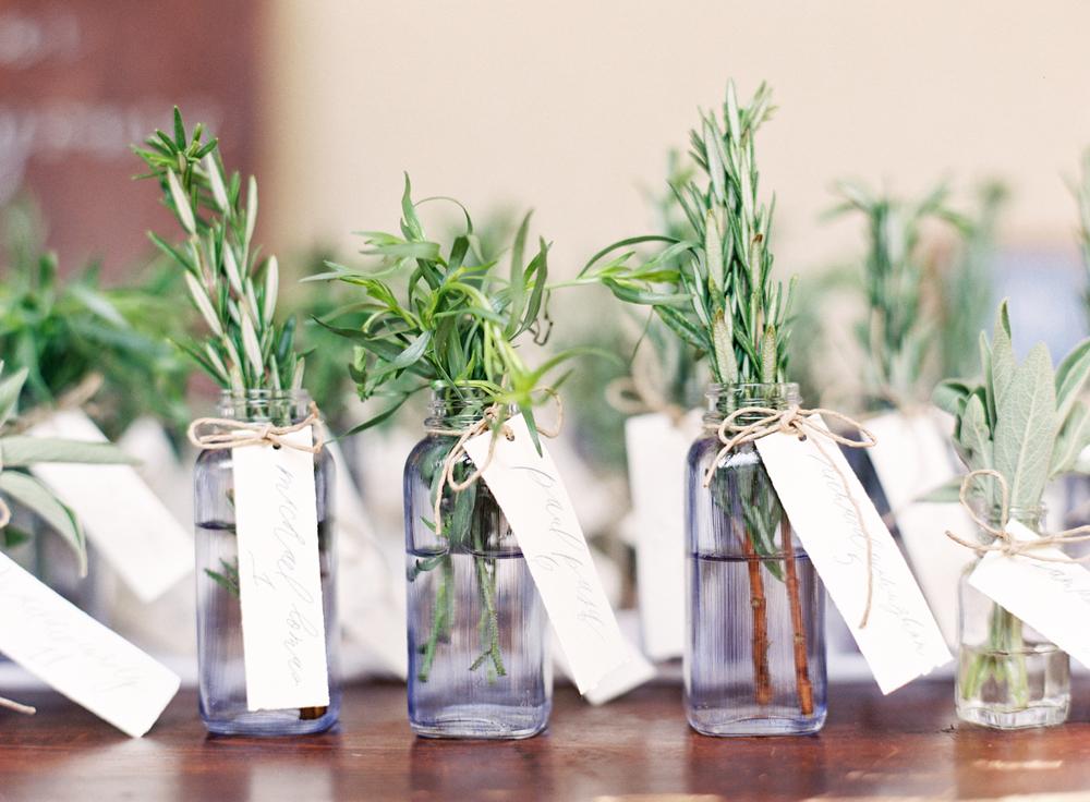 Mini Vase of Fresh Herbs