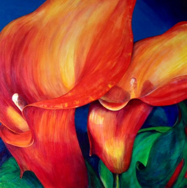 Daphne's Calla Lillies