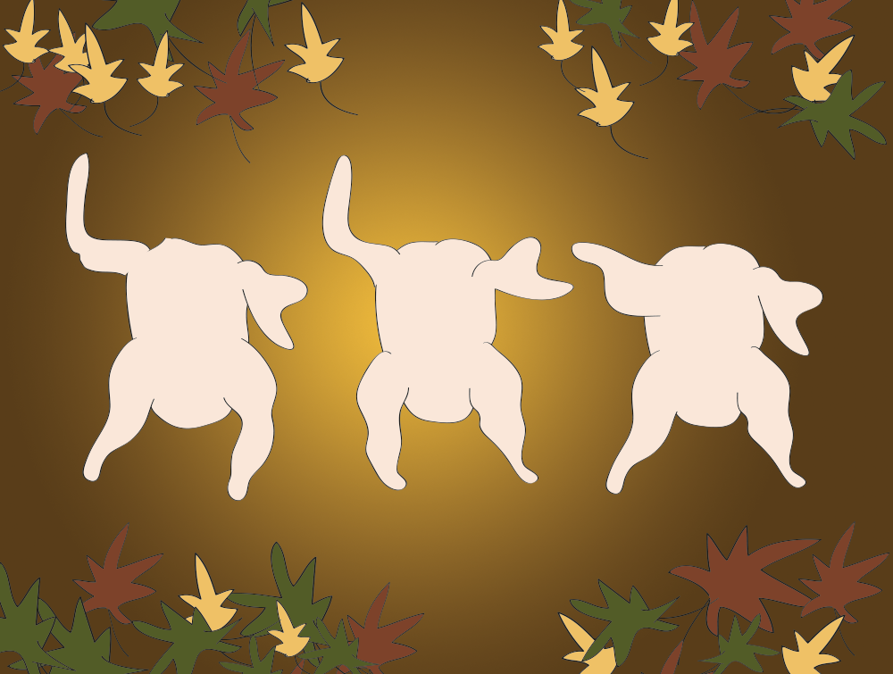 drawn-for-you-dancing-turkeys-thanksgiving.png