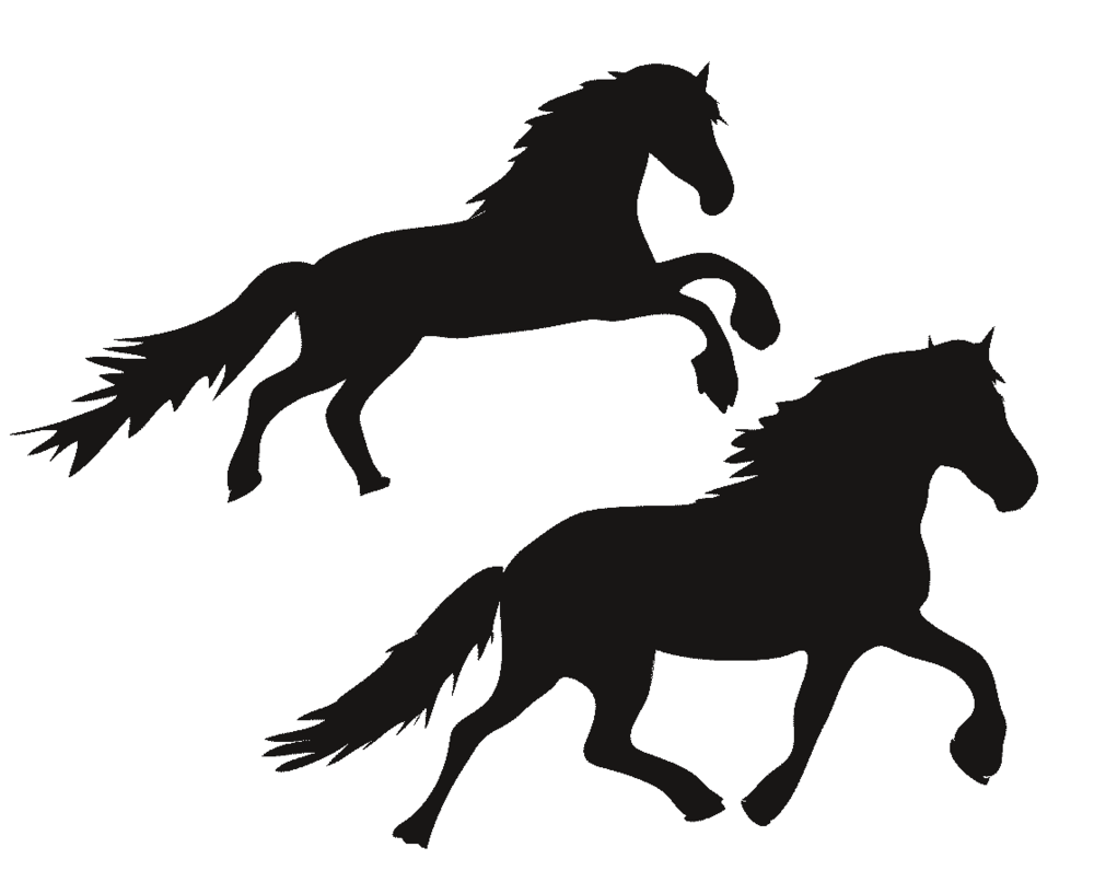 Wild horses illustration