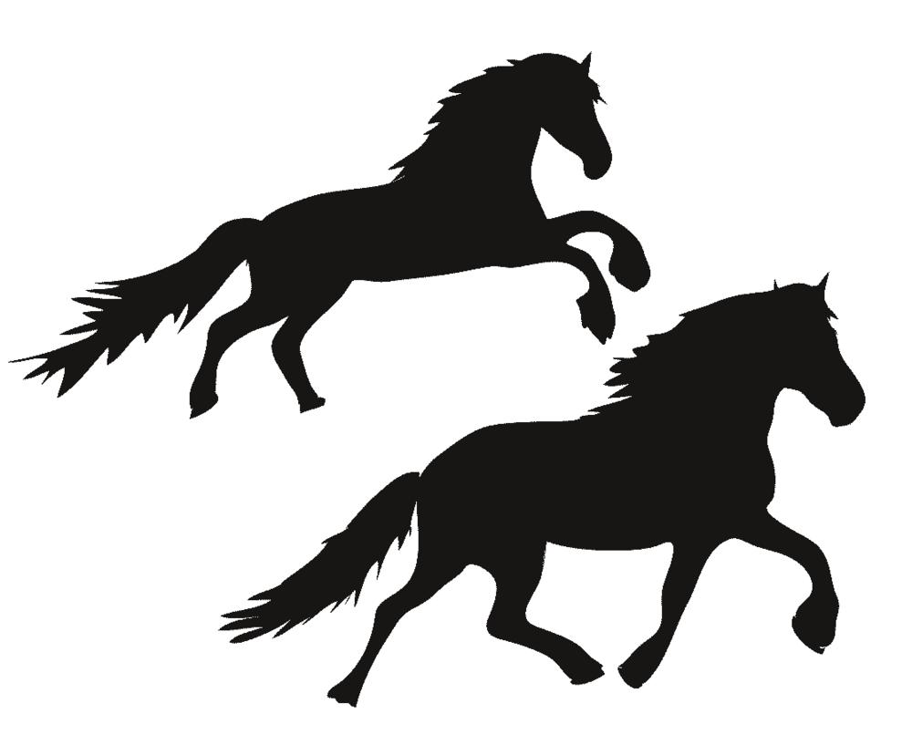 Wild horses illustration