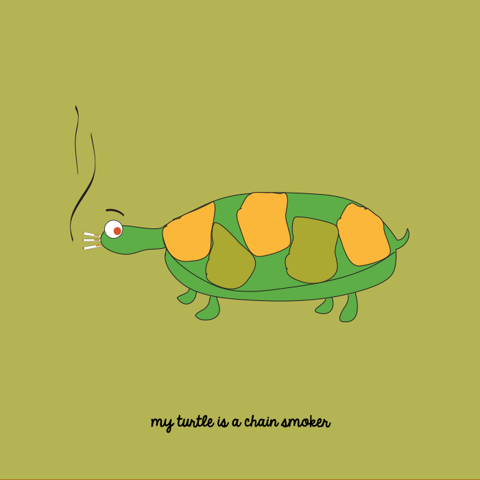 My turtle is a chain smoker