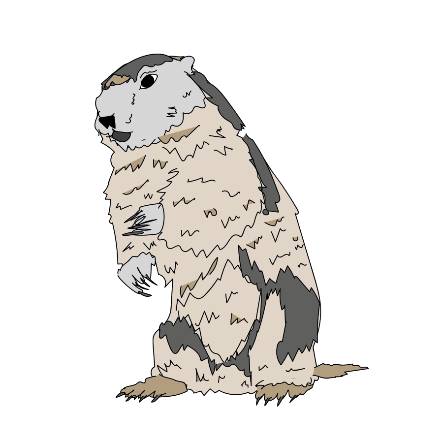 Groundhog Day illustration