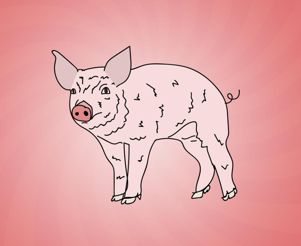 National Pig Day illustration