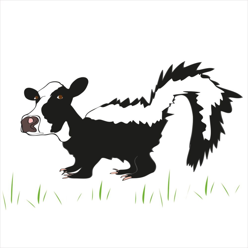 He is cute and docile but don't get too close... he stinks to high heaven. He is SKUNKCOW