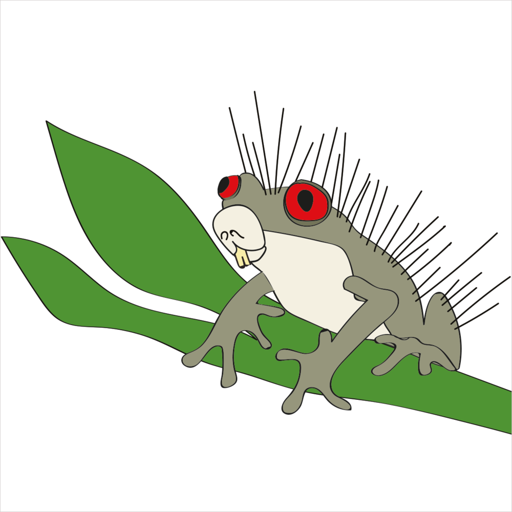 He's covered in quills to keep predators away and is able to jump great distances. He is PORCUPINEFROG