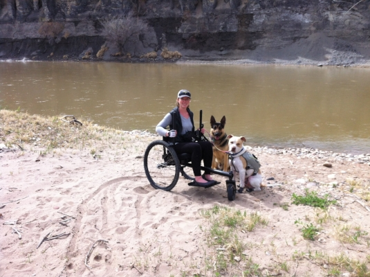 Walking my Service Dog, Cash the Pit Bull, and his friend, Trae the German Shepherd, along the Colorado River!