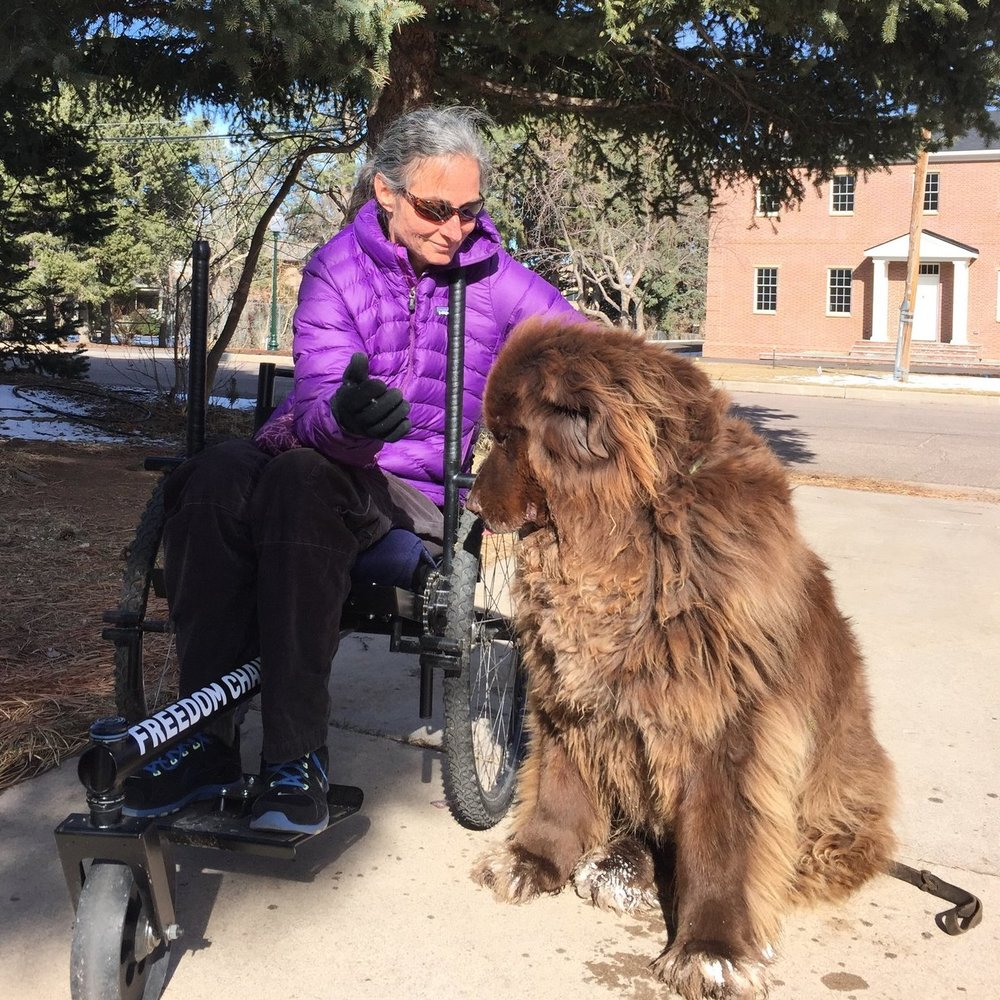 """""""This is an awesome off-road wheelchair that has opened up my world immensely. Not only can I easily navigate dirt roads, mud, lawns, snow and ice, but I am now able to get to many more places in nature that I was no longer able to get to.""""    Read more from Pedee here."""