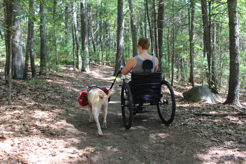 Me and my Service Dog exploring a gentle trail near  Walden Pond.
