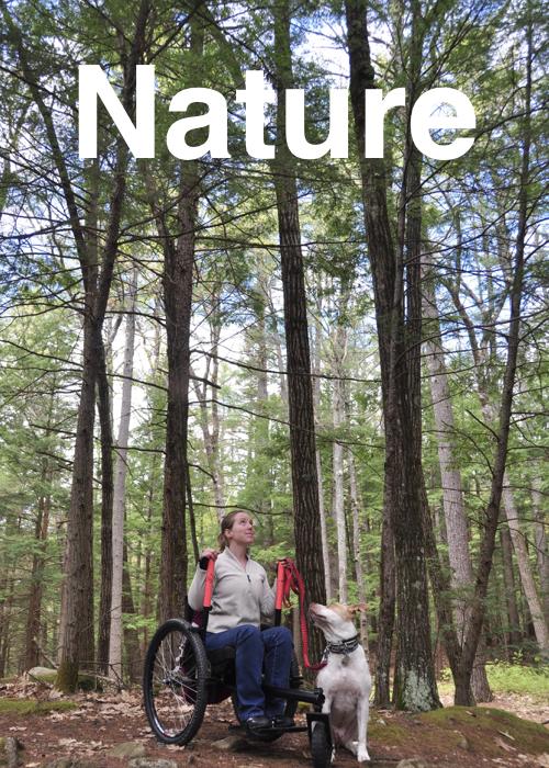 nature slides.002.jpeg
