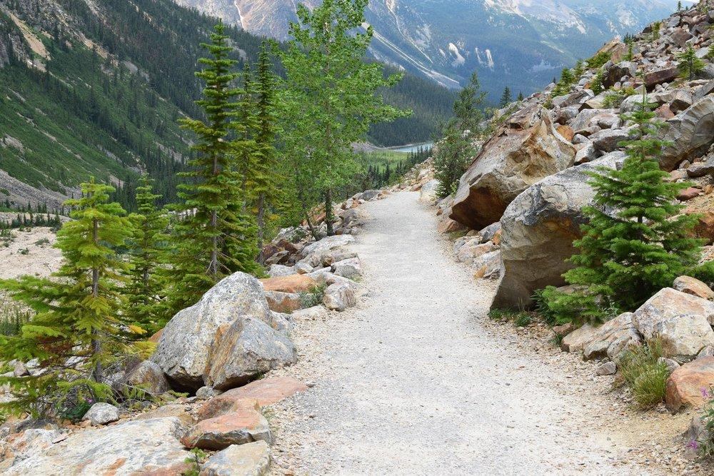 Path to Edith Cavell Glacier, Jasper National Park, Alberta, Canada