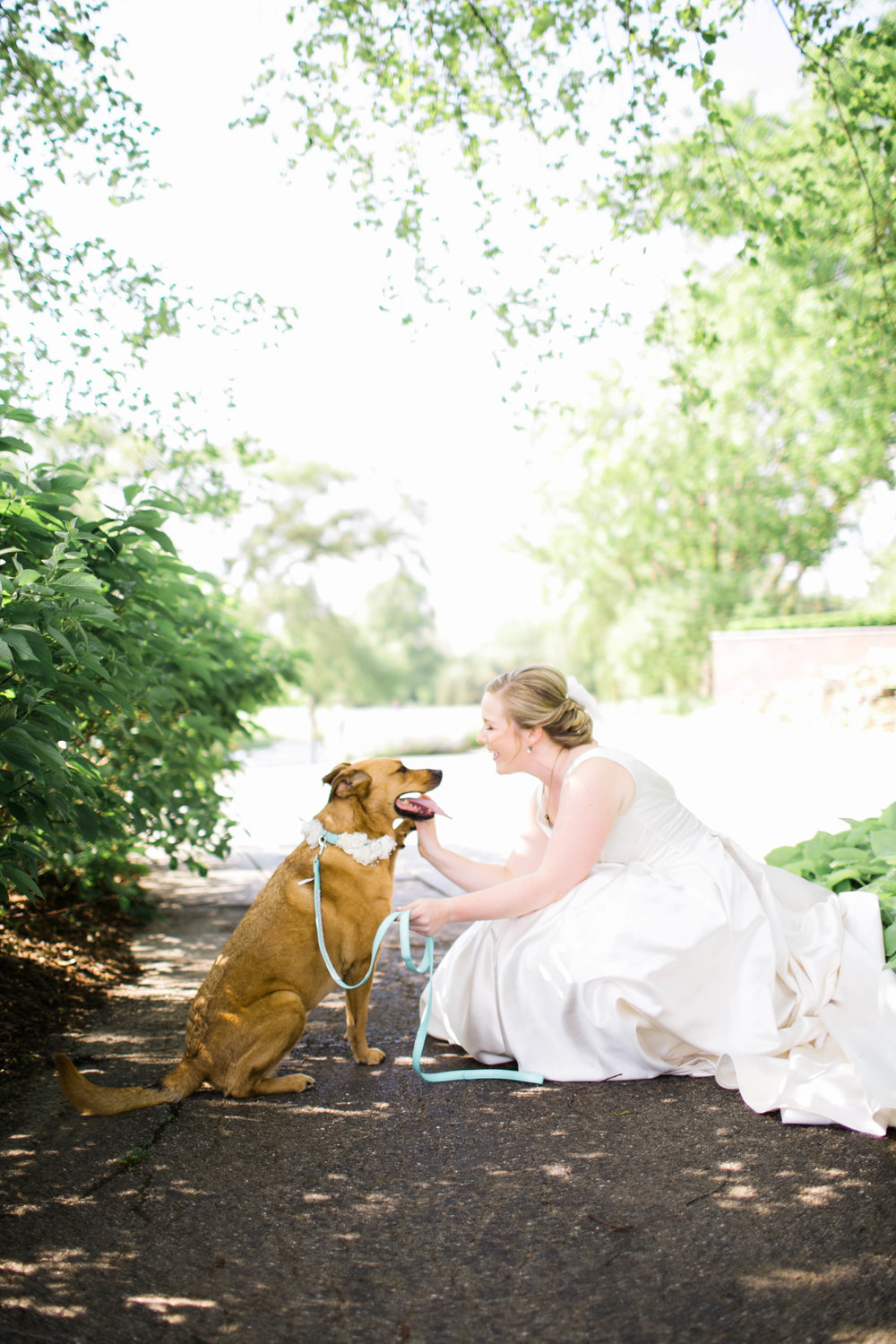 BrideAndDogPortrait
