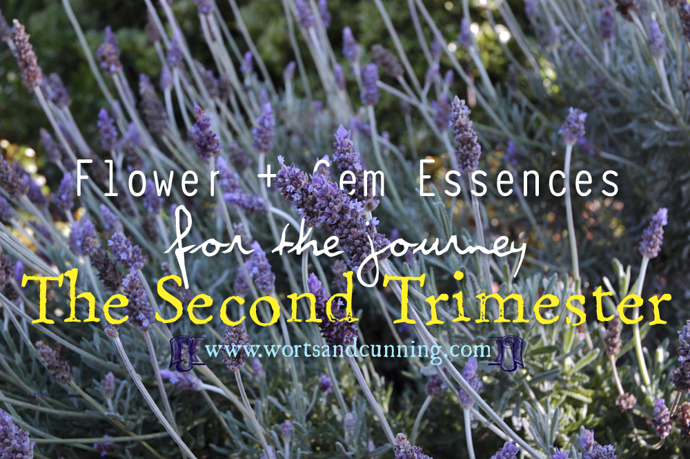 Second Trimester Labor Birth Flower Gem Essences