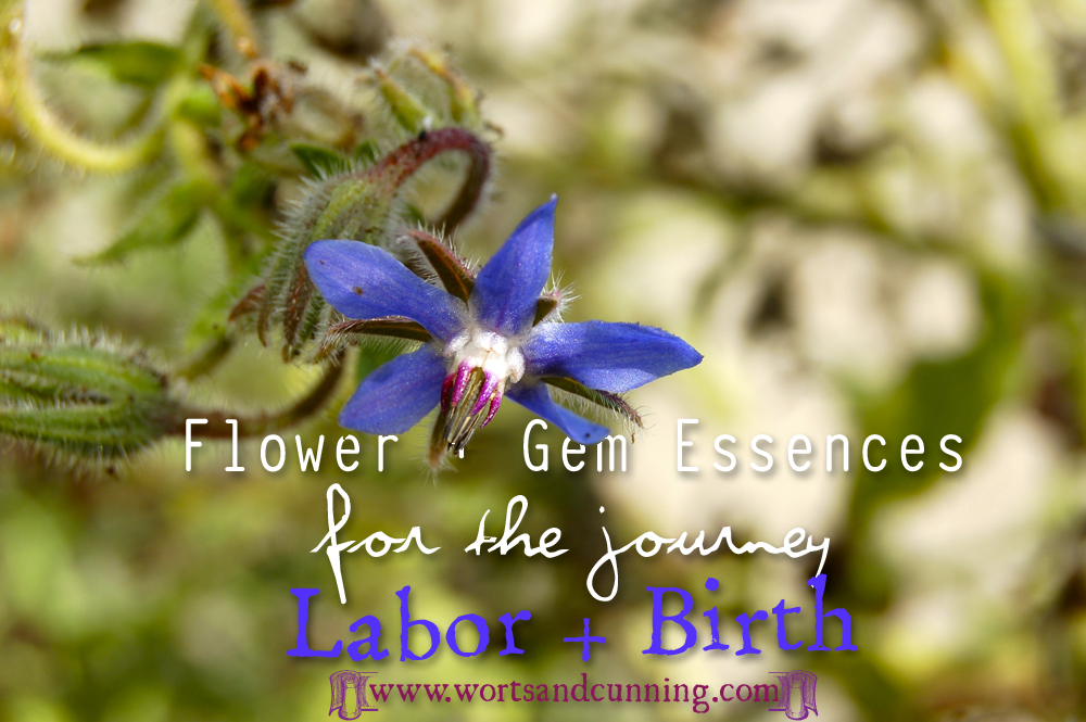 Labor  Flower Gem Essence Pregnancy