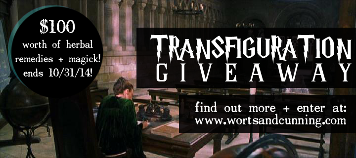 Transfiguration Giveaway