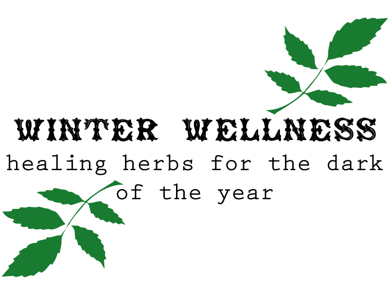 Winter Wellness Healing Herbs