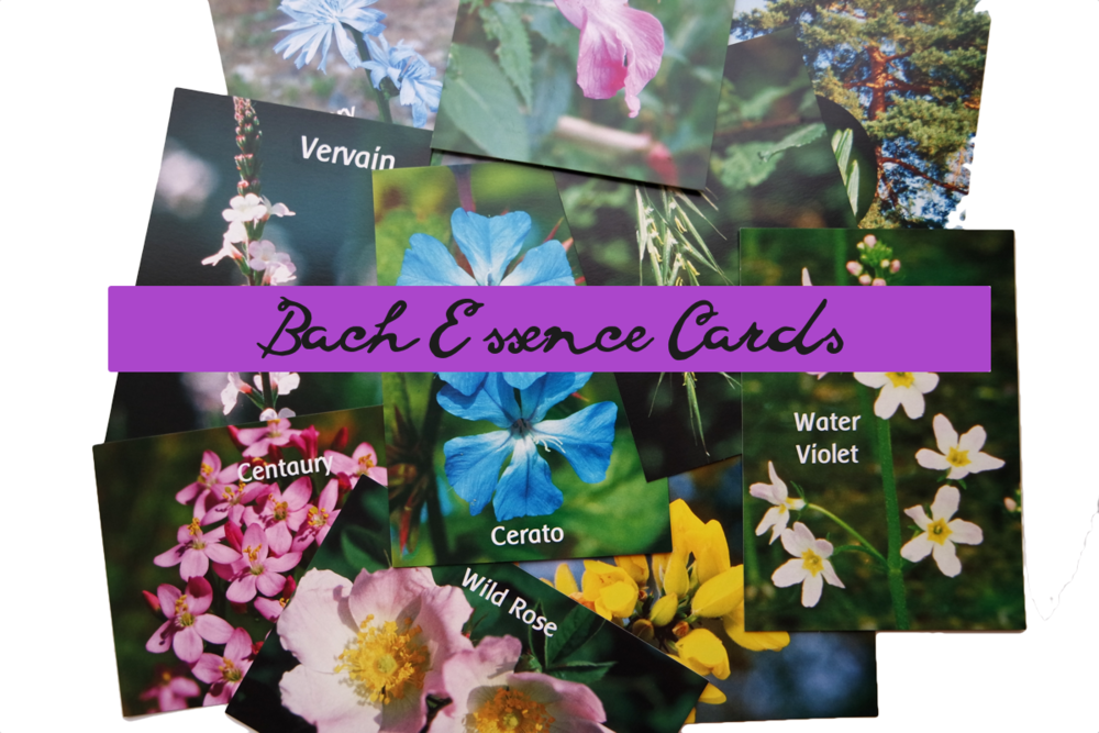 Bach Flower Cards.png