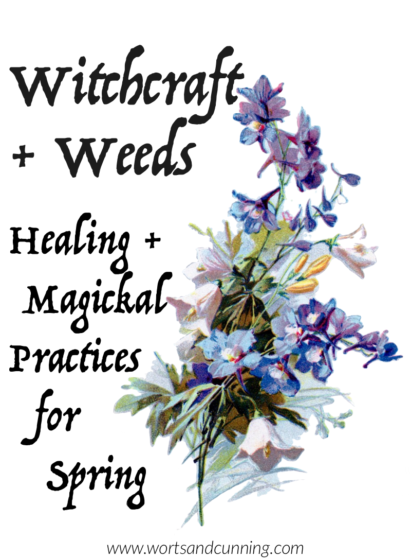 Witchcraft + Weeds: Healing + Magickal Practices for Spring — Worts