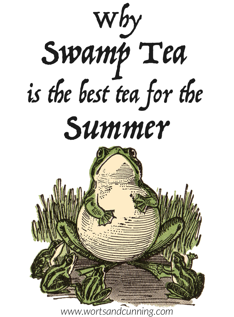 swamp tea