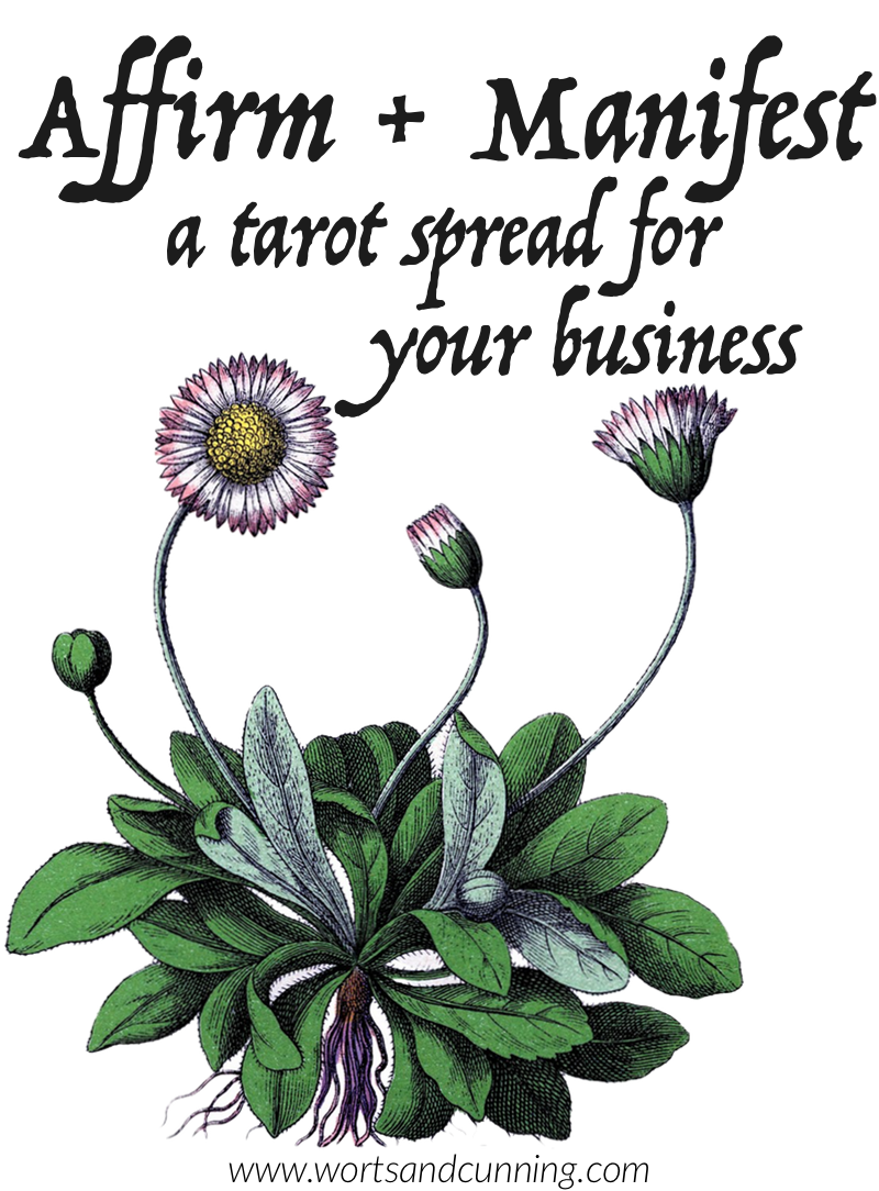 business tarot spread