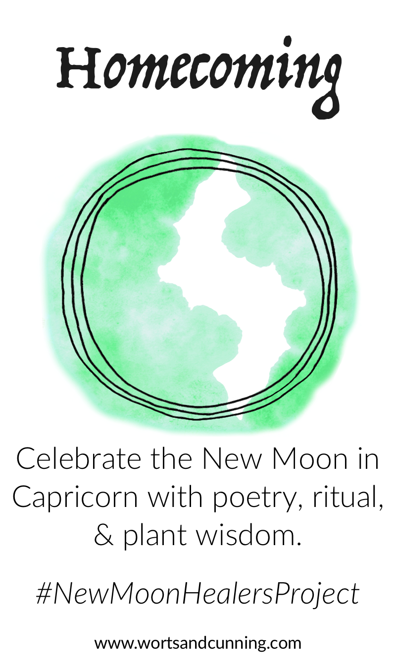 capricorn new moon