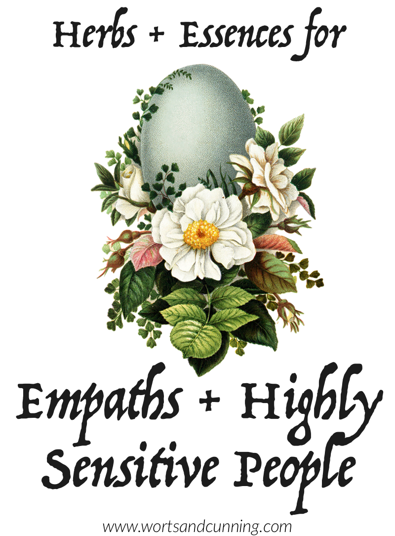 Herbs and Essences for Empaths and Highly Sensitive People — Worts +
