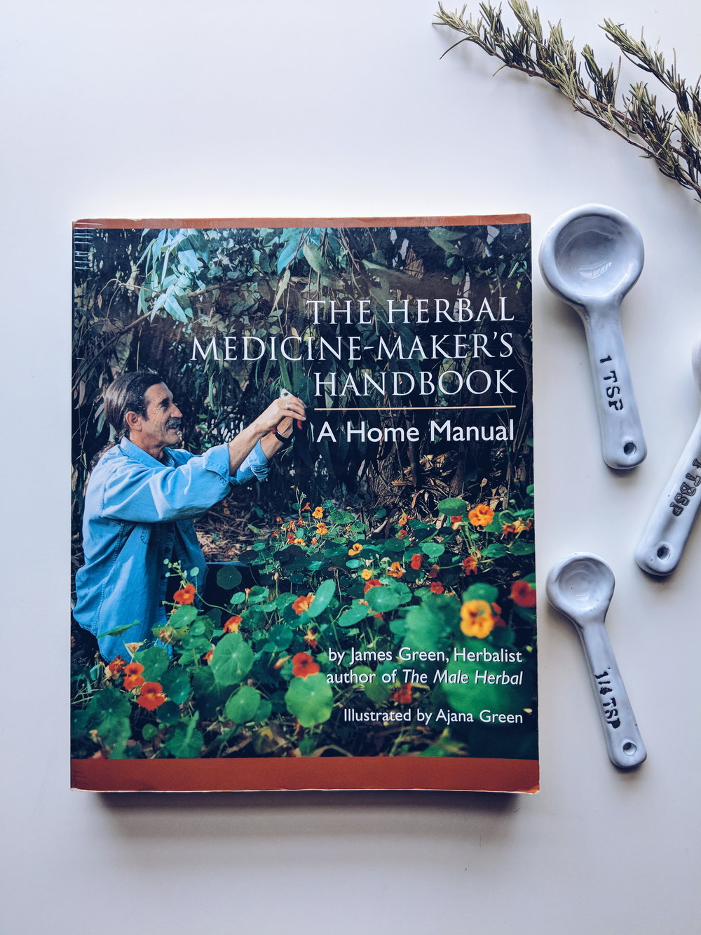 herbal medicine-makers handbook