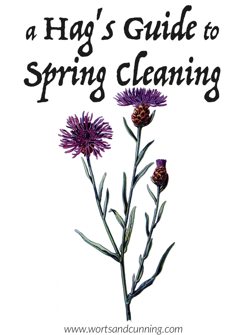 A Hag's Guide to Spring Cleaning — Worts + Cunning