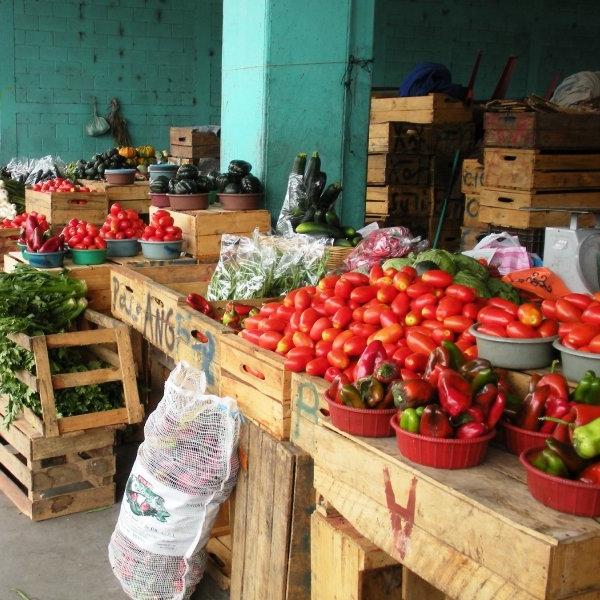 market 6.jpg