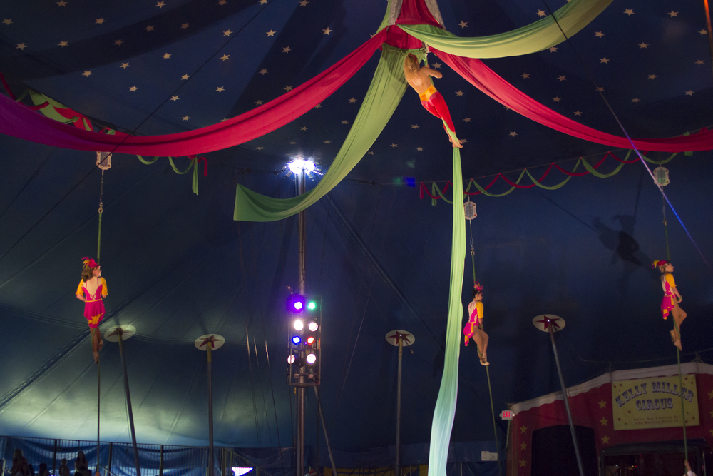Circus-AfterLR-3249.jpg