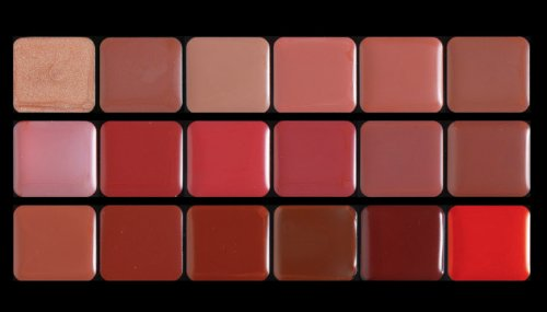 Lip Palette for Pros