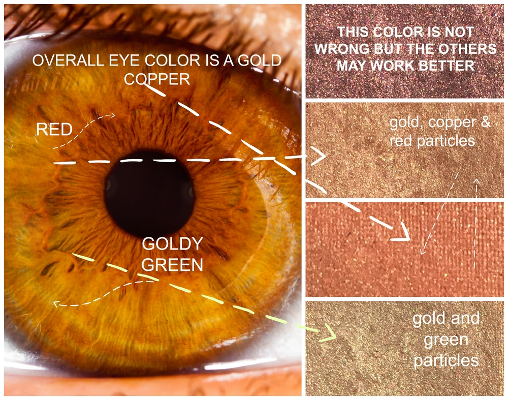 My Geeky Way To Choose Eyeshadow Color Glossible